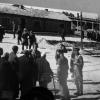 Auschwitz (13)