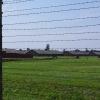 Birkenau (1)