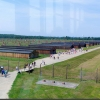 Birkenau (15)