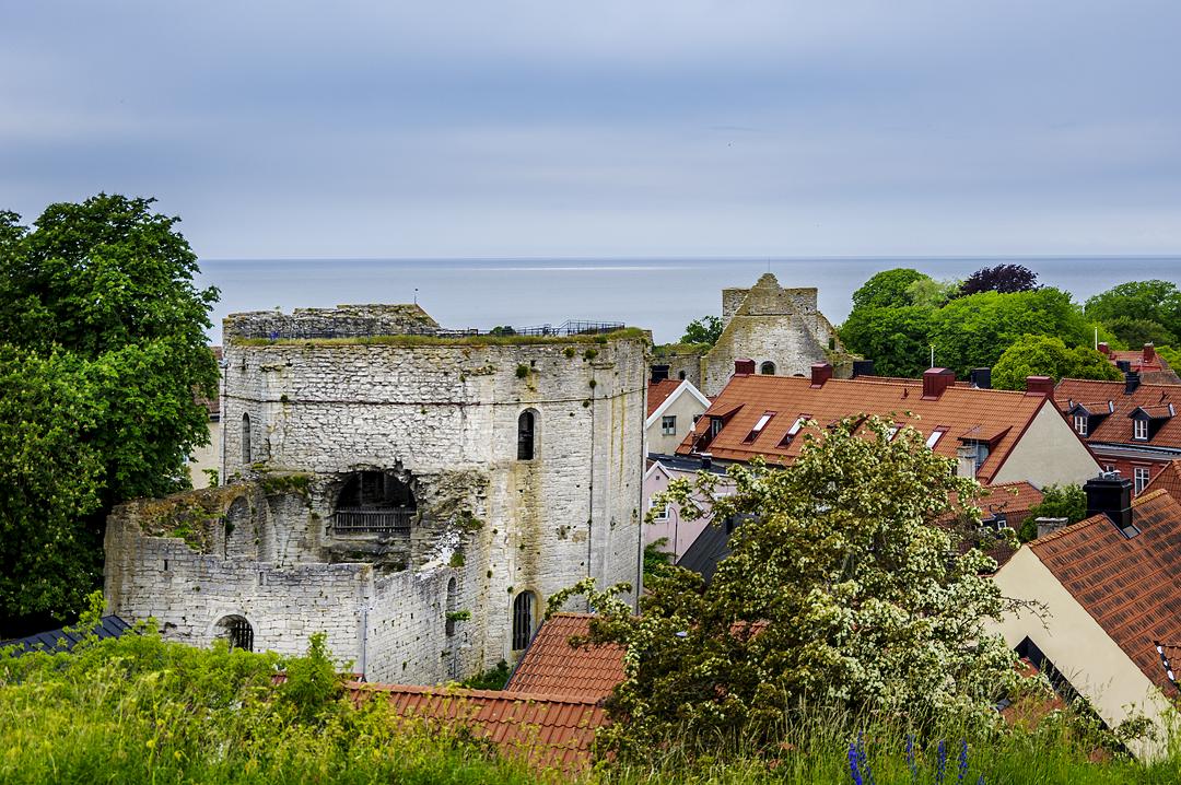 Gotland (8)