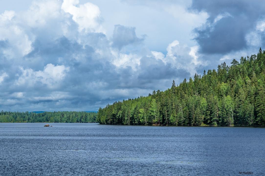 Norra Jämtland (1)