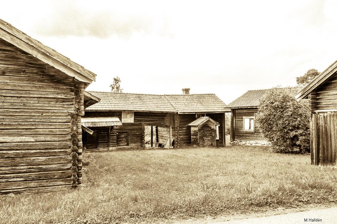 Norra Jämtland (13)