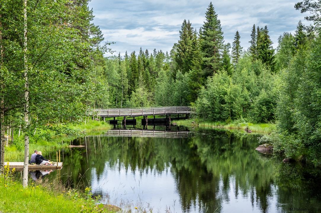 Norra Jämtland (15)