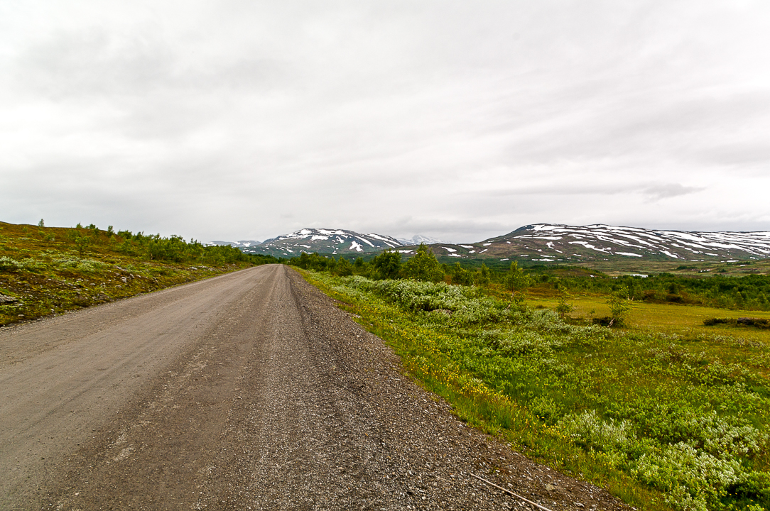 Norra Jämtland (80)
