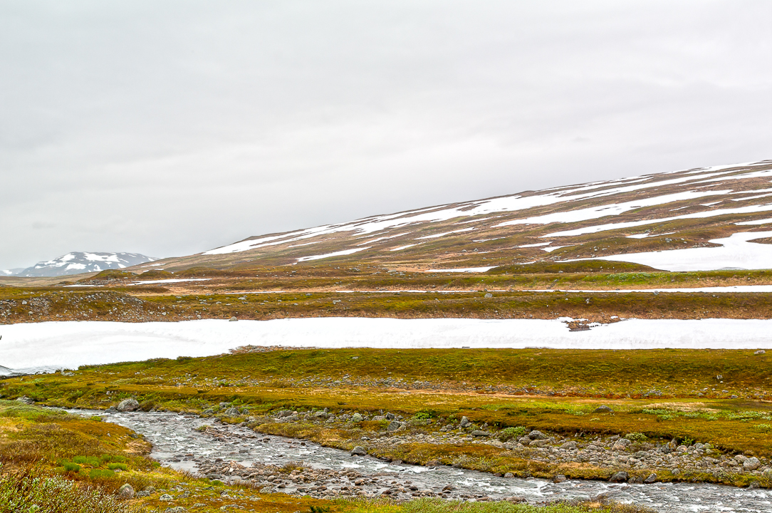 Norra Jämtland (82)