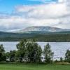 Norra Jämtland (41)