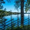 Norra Jämtland (66)